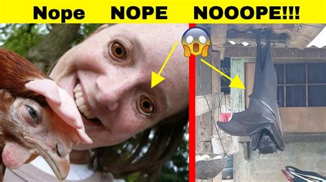 Pictures That Will Make You Say NOOOPE! - YouTube